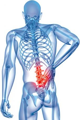 Ein Wort zu statischen Ergos: Flexibilität der Muskeln